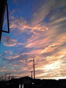 ☆早朝の散歩☆