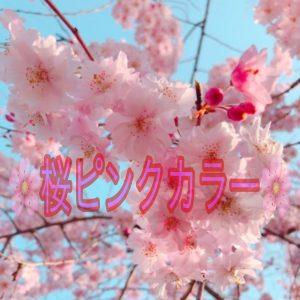 ♪☆サクラ咲ケ☆大人気ピンクカラー♪